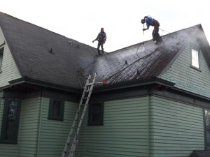 Our crew hard at work cleaning another happy customer's roof.